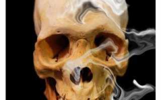Состав никотина в сигаретах