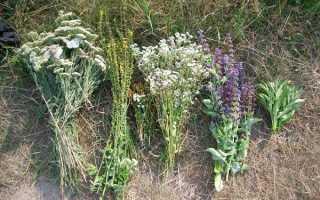 Травы от курения сигарет