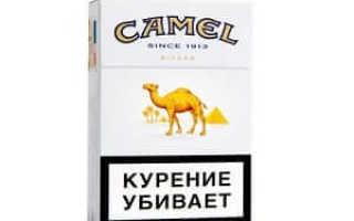Фото пачки сигарет кэмел