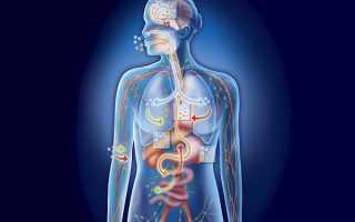 Что меняется в организме когда бросаешь курить