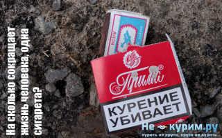 На сколько сокращает жизнь одна выкуренная сигарета