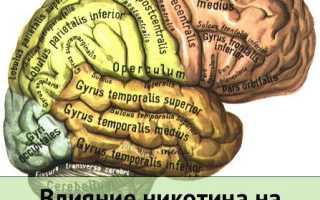 Курение и нервная система