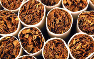 Какой вред наносит никотин