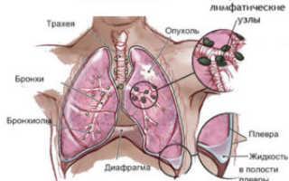 Через какое время никотин выходит из организма