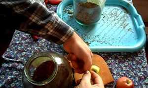 Ароматизация табака в домашних условиях рецепты