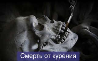 Сколько людей умерло от сигарет