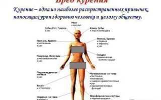 О вреде курения и алкоголя